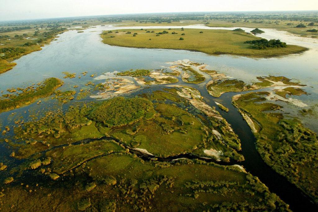 Botswana Okavango Swamps