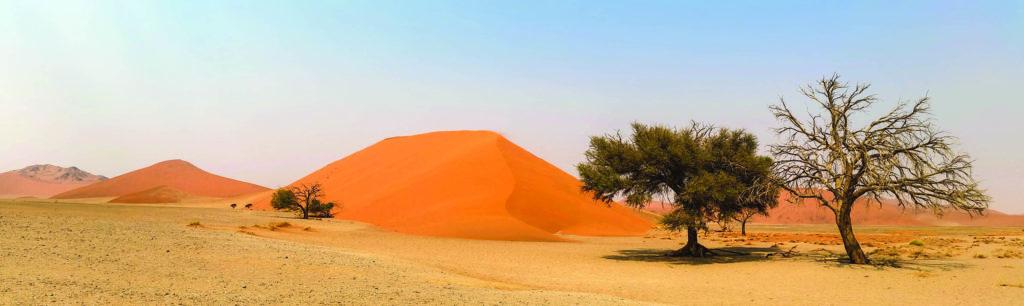 Namibia - FCT Senior Travel