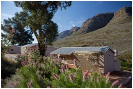 Cederberg cottage with flowers
