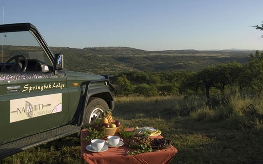 The Springbok Lodge picnic