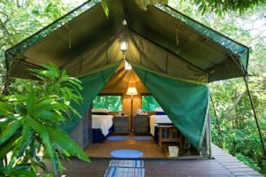 One of the luxurious tents at Thandulula Safari Tent Accommodation