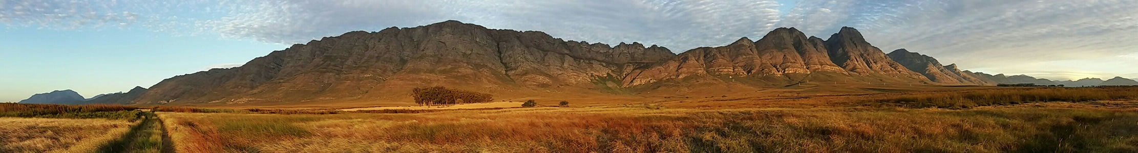Bartholomeus Fields mountain