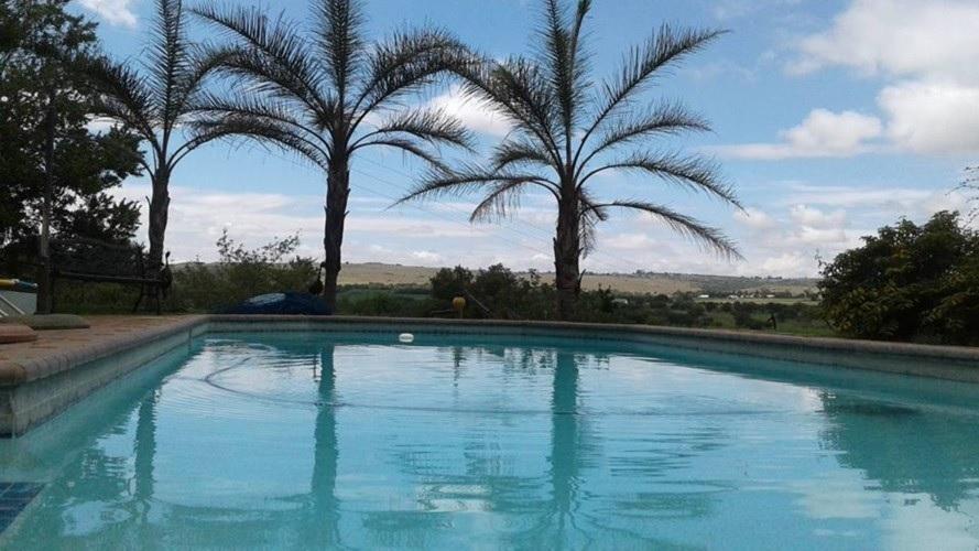 Thabametsi - swimming pool