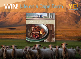 LIfe on a cape farm
