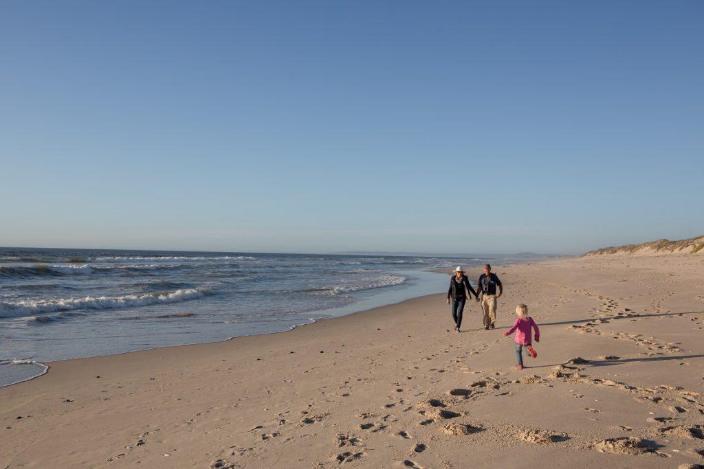 Cape Nature - 7