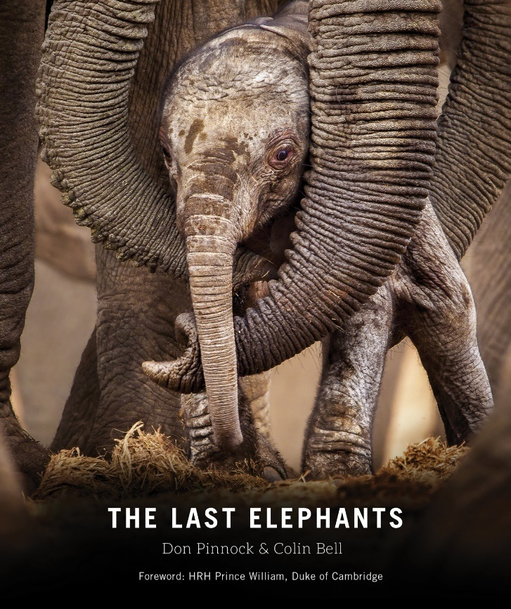 The Last Elephants cover