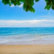 Kwazulu natal beach
