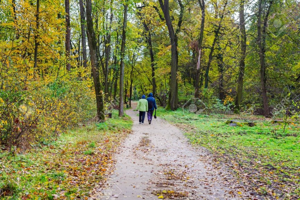 seniors walking in forest