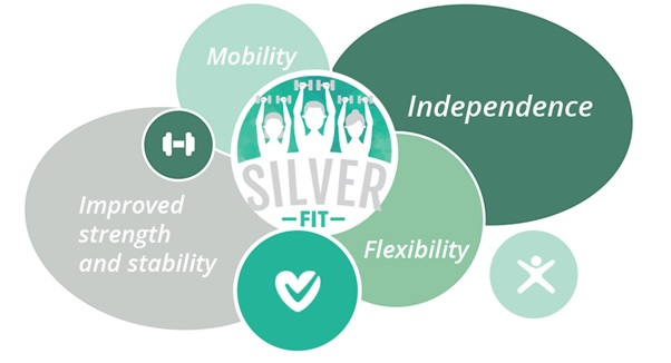 Silver Fit image