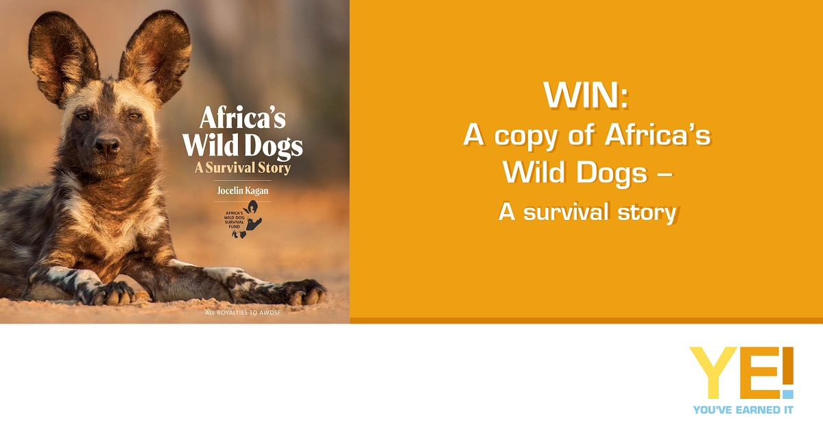 WIN Africas Wild Dogs