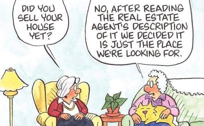 seniors and estate agent