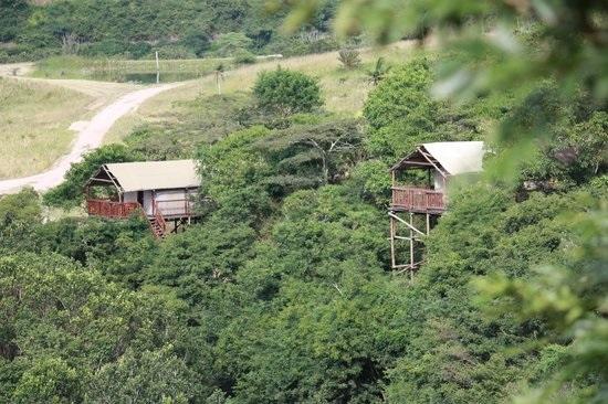 Rain farm guest lodge